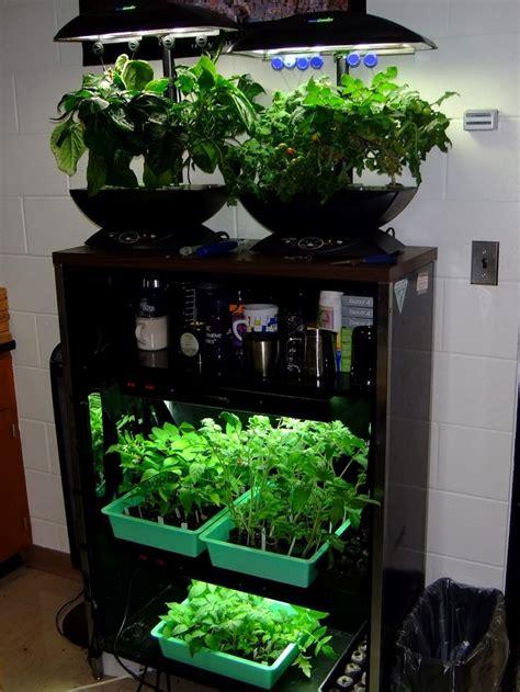 enchanting indoor herb garden cabinet   counter