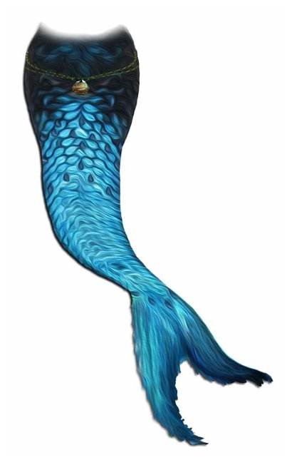 Mermaid Tail Transparent Deviantart Clip Clipart Library