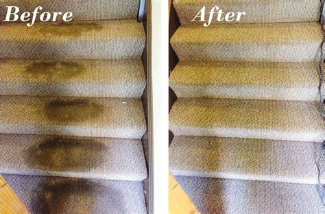 Upholstery Cleaning Toronto by Carpet Cleaning In Mississauga Carpet Steam Cleaning Toronto
