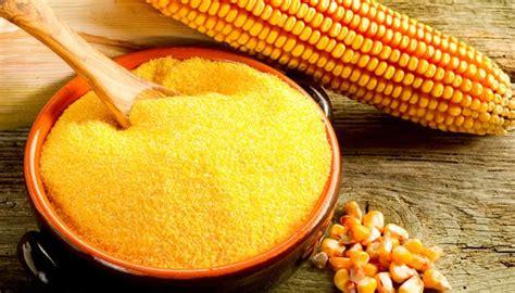 cucinare mais ricette con farina di mais gialla ricette di