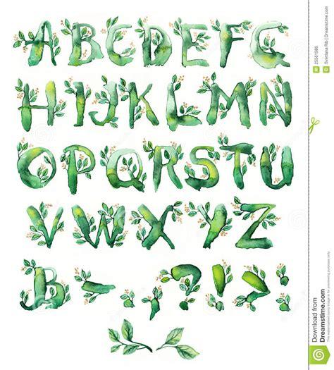 bay leaves pattern bay leaf set of letters stock illustration image of