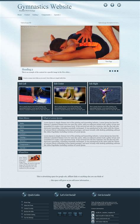 virtue gymnastics blue gymnastics web template
