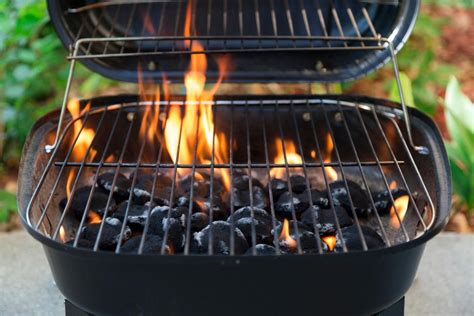 Popular Types Of Barbecue Grills And How To Choose The