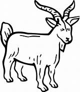 Billy Goats Gruff Coloring Goat Three Drawing Pages Line Clipart Printables Preschool Getdrawings Printable Getcolorings Clipartmag sketch template