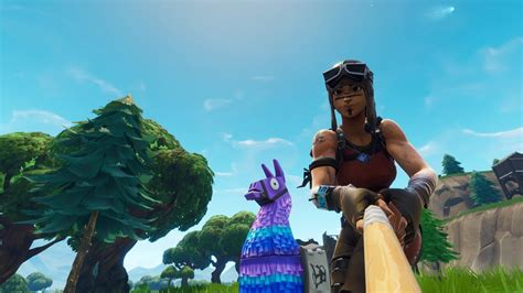 Took A Selfie With A Llama, Ended Up Getting The Comet Too