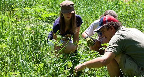 Careers In Environmental Science Career Field  Iresearchnet. Cloud Accounting Reviews Nyu Phd Psychology. Preparing For Cpa Exam Barclay Online Savings. Transport Motorcycle In Truck. Auto Extended Warranty Prices. Weinberg Community For Senior Living. Online College Education Degree. Mass School Of Professional Psychology. Electrical Problems Jeep Grand Cherokee