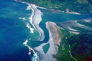 Aquatic and Marine Biomes · Concepts of Biology