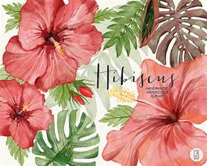 Watercolor hibiscus flower tropical leaves jungle plants