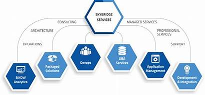 Overview Services Company Skybridge Business Alignment Global