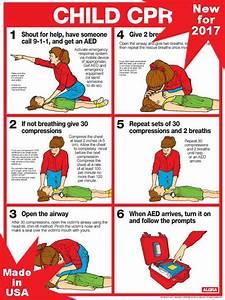 10 Foot Vision Chart Macgill Child Cpr Chart Laminated 18 Quot X 24 Quot Choking
