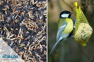 Glasreiniger Selber Machen Ohne Spiritus : meisenkn del vogelfutter selber machen ideen und rezepte ~ Markanthonyermac.com Haus und Dekorationen
