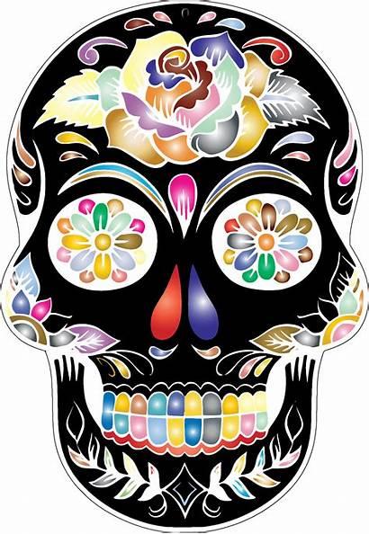 Skull Transparent Clipart Dead Sugar Skulls Flower