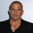 Dominic Purcell Bio, Fact -age,height,net worth,salary ...
