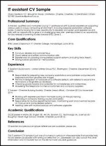 curriculum vitae resume exle it assistant cv sle myperfectcv