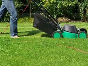 Tondre La Pelouse Sans Ramasser : comment bien tondre une pelouse guide complet gazon vert ~ Melissatoandfro.com Idées de Décoration