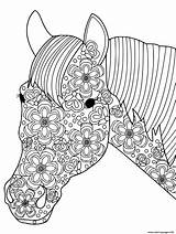 Coloring Horse Stress Pages Adults Anti Printable Head Info sketch template