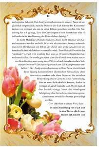 Kühlschrank Geruch Entfernen : das geruch und geschmack wunder german deutsche ~ Frokenaadalensverden.com Haus und Dekorationen