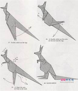 Origami Kangaroo Kangaroo Origami Origami Kangaroo