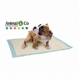 Tapis educateur x 10 de zolux du chiot animal co for Tapis éducateur chiot