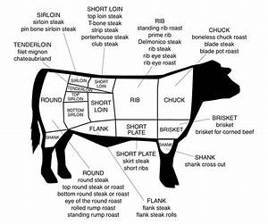 Diagram For Cuts Of Beef