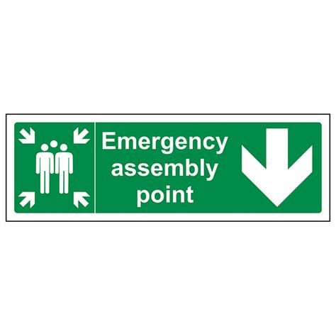 Emergency Assembly Point Arrow Down  Safety Signs 4 Less. Activator Rtpa Signs Of Stroke. Baby Shower Signs Of Stroke. Ppd Signs. Stats Signs. Trade Show Signs Of Stroke. Medical Clinic Signs Of Stroke. Analysis Signs Of Stroke. Green Infrastructure Signs Of Stroke
