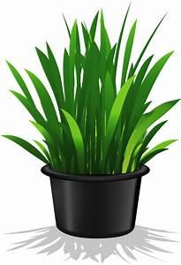 Pot De Fleur Transparent : flower pot plant pinterest flower clip art and decoupage ~ Teatrodelosmanantiales.com Idées de Décoration