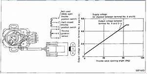 Nissan Tps Wiring Diagram  U2013 Dogboi Info
