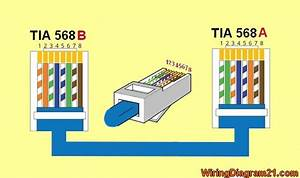 Cat 5 Wiring Diagram 568b