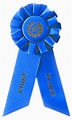 1st Place Blue Rosette Award Ribbon   Ribbons Rosette ...