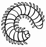 Coloring Millipede Centipede Insect Pages Clipart Colouring Creepy Centipedes Sheets Cartoon Crawlers Insects Drawing Animals Millipedes Printable Preschool Colour Bug sketch template