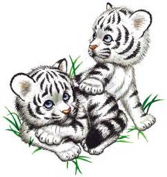 Baby White Tigers Endangered