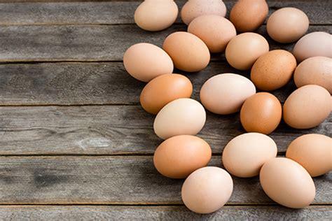regular egg consumption  harm  health