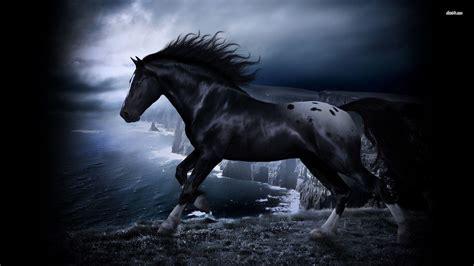 Black Horse Desktop Wallpaper