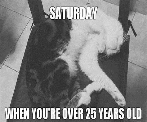 Funny Saturday Memes - funny saturday memes www pixshark com images galleries with a bite