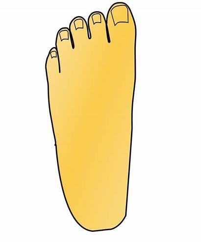 Leg Foot Clipart Right Clip Left Transparent
