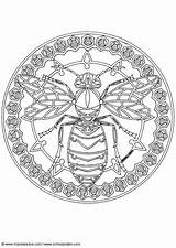 Bee Coloring Mandala Bees Wasp Adult Bumble Queen Tattoo Clip sketch template