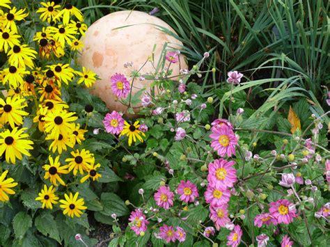 Garten Herbst Anemone by Herbst Anemonen Pflanzen Pflegen Vermehren Mein