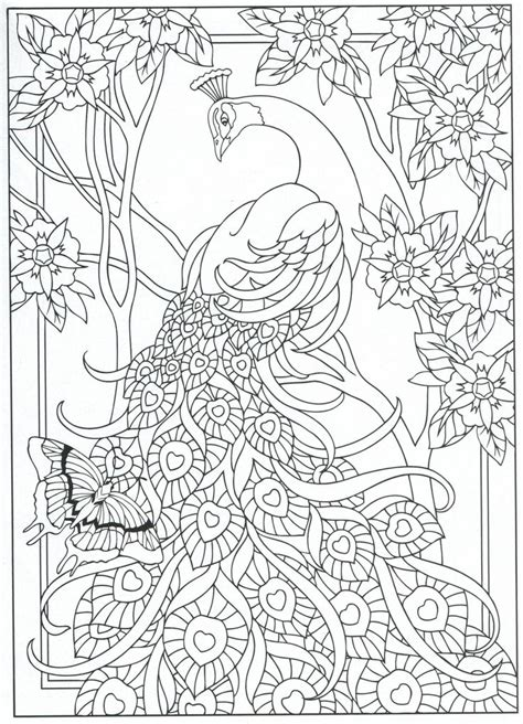 peacock coloring pages for adults peacock coloring page for adults 7 31 pinteres