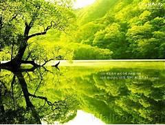 All Wallpapers  Beauti...Beautiful Nature Scenery Wallpapers