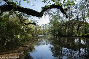 Scenic Photos: Louisiana Scenery Photos