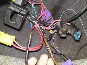 Fuel Pump Relay   Wiring - Passionford