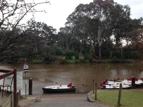Boat House Yarra by Studley Park Boathouse Kew 2018 All You Need To Know