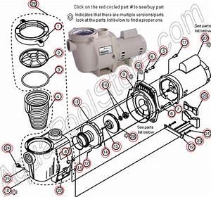 Repair Whisperflo Pump Remove Diffuser