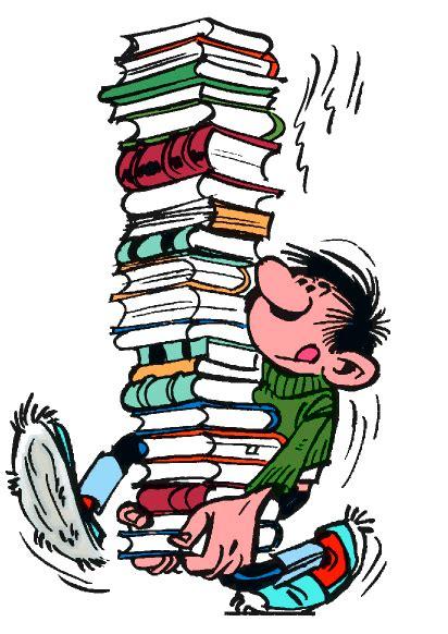 guide de lecture critique de livre conseil litt 233 rature pal