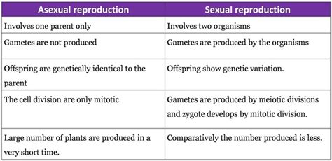 sexual reproduction  flowering plants biologyisc