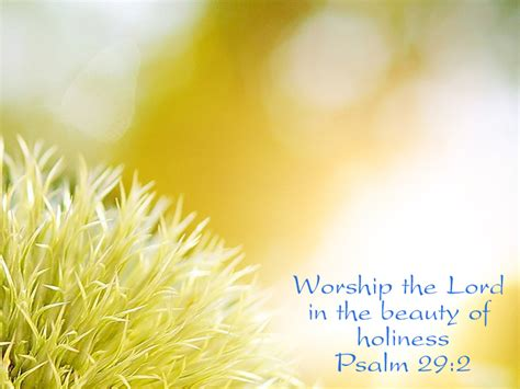 beauty  holiness sarmy powerpoint background