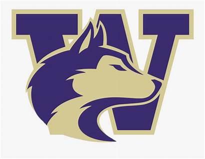 Washington University Huskies Transparent Clipartkey