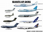 The Giant of Skies...All types of airplane flown in the ...