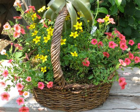 fs outdoor container gardening  flowering