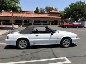 1990 Mustang Gt Convertible 5 0 5 Speed Black Interior For